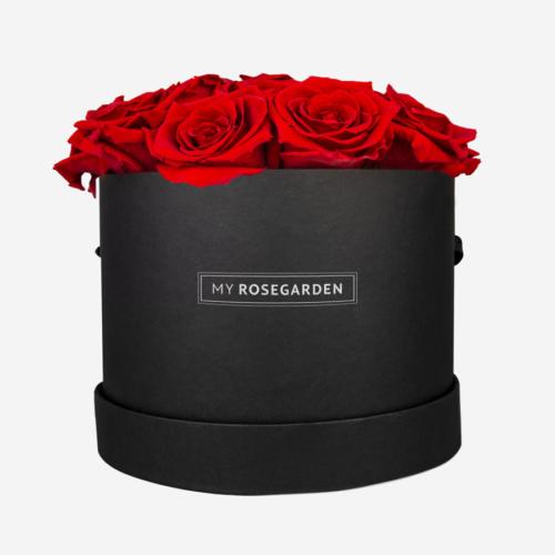 16 rote Infinity Rosen in schwarzer Rosenbox