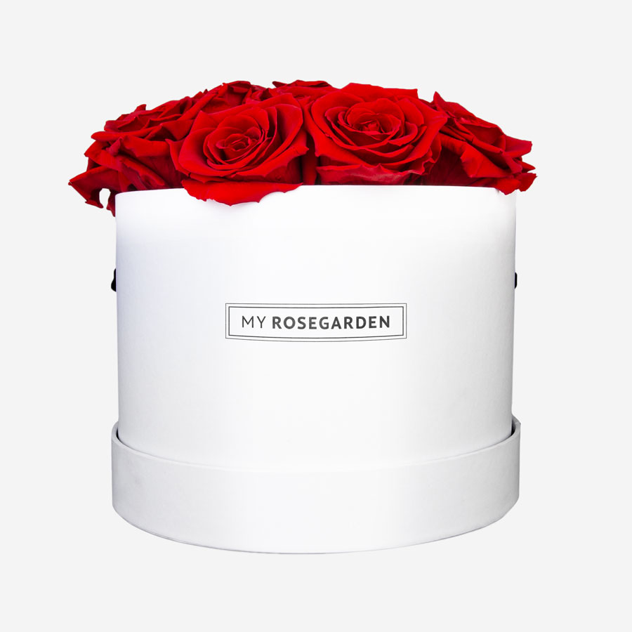 16 rote Infinity Rosen in weißer Rosenbox