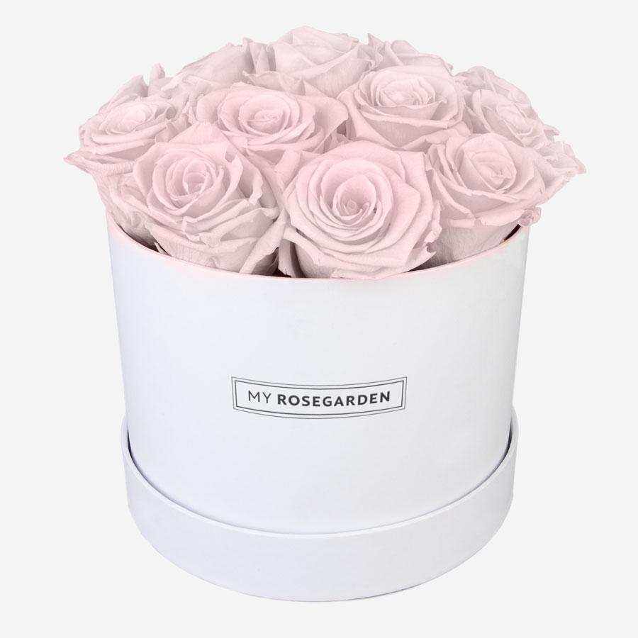 16 rosa Infinity Rosen in weißer Rosenbox