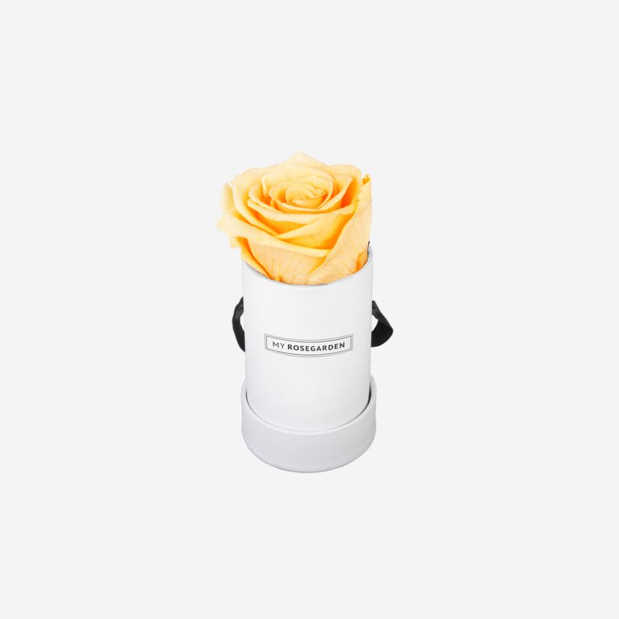 1 gelbe Infinity Rose in weißer Rosenbox