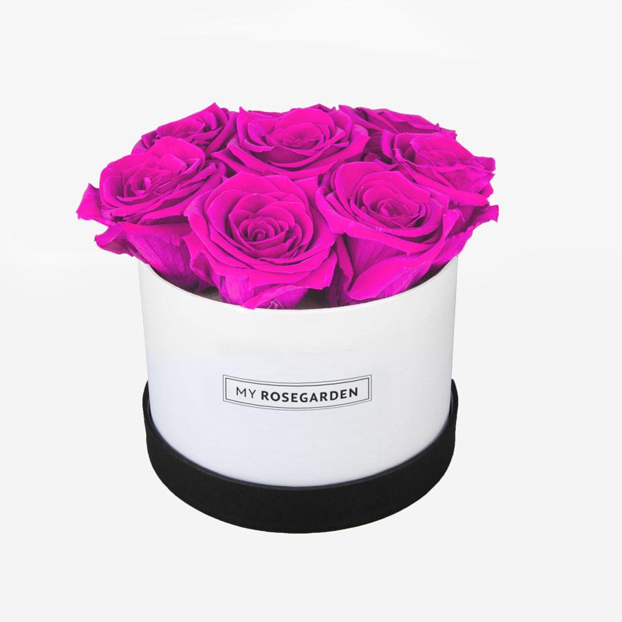 8 Pinke Infinity Rosen in weiß-schwarzer Rosenbox - My Rosegarden