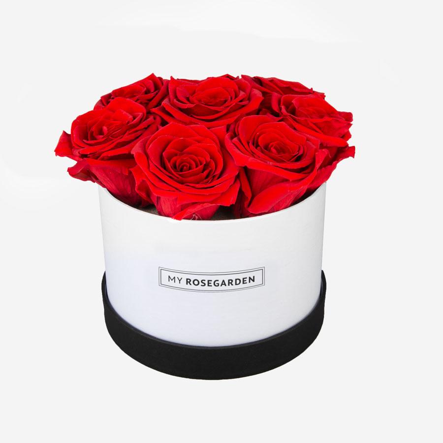 8 rote Infinity Rosen in weiß-schwarzer Rosenbox, My Rosegarden
