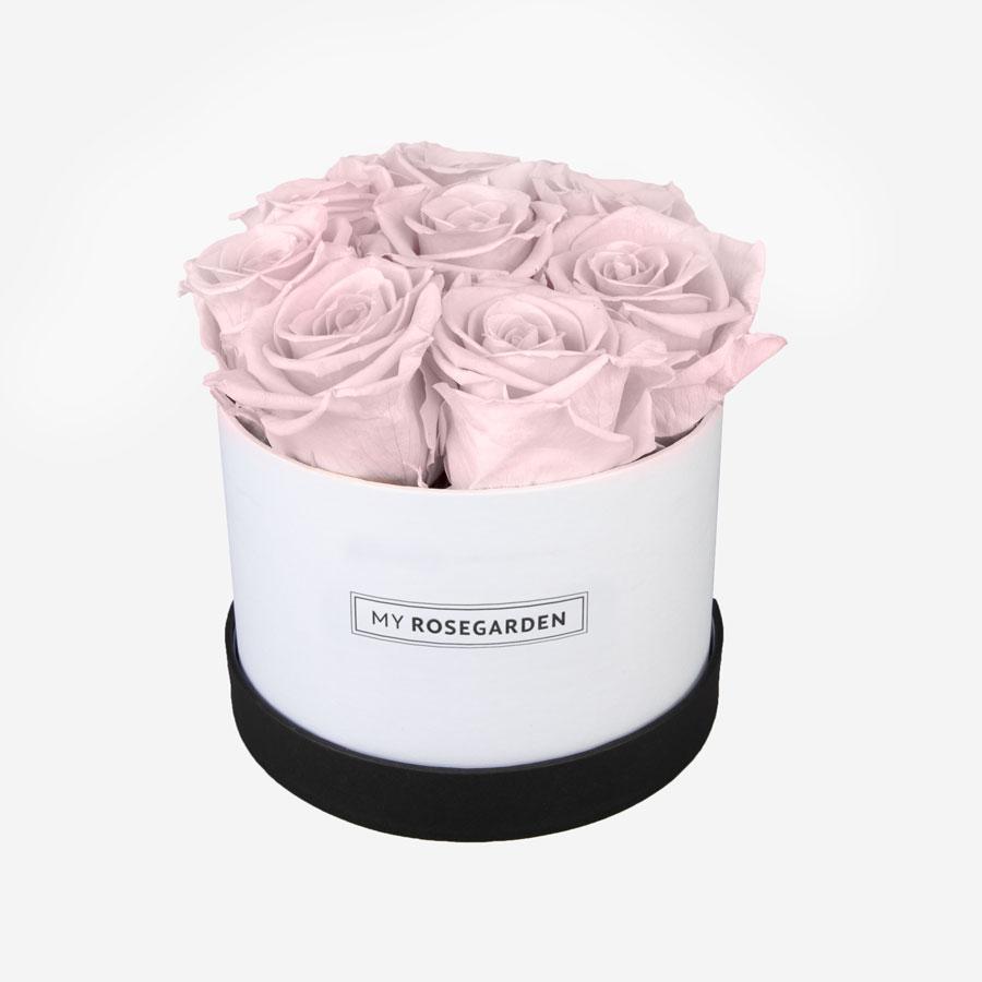 8 rosa Infinity Rosen in weiß-schwarzer Rosenbox, My Rosegarden