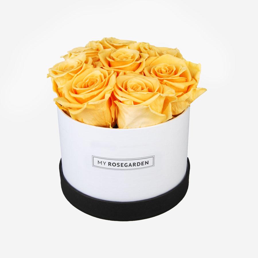8 gelbe Infinity Rosen in weiß-schwarzer Rosenbox