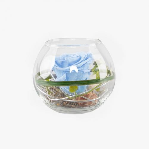 1 hellblaue Infinity Rose im Glas