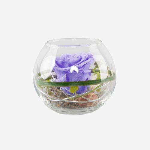 1 lila Infinity Rose im Glas