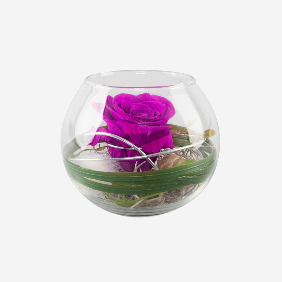 1 pinke Infinity Rose im Glas
