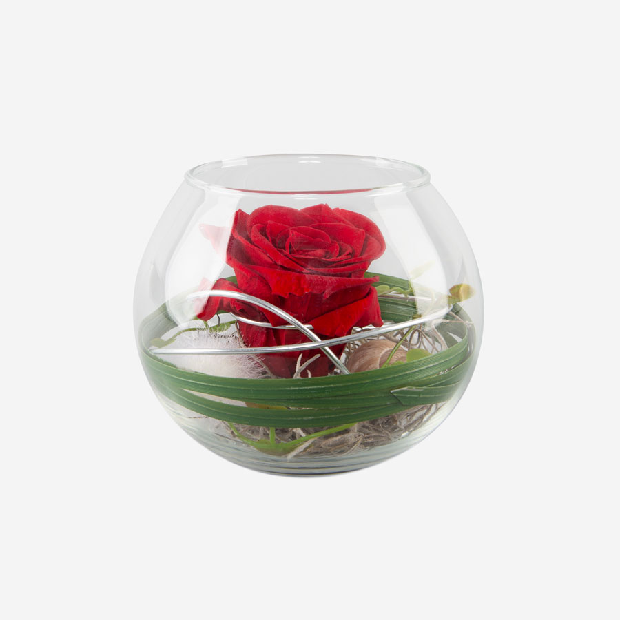 1 rote Infinity Rose im Glas