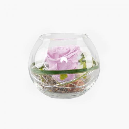1 rosa Infinity Rose im Glas