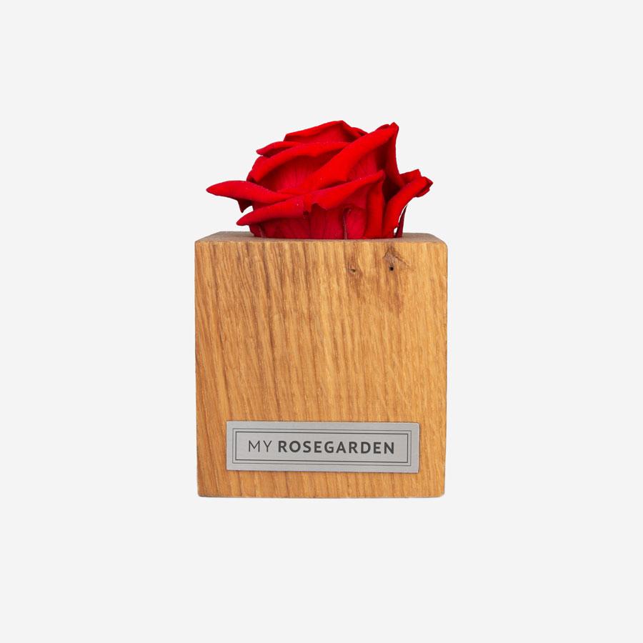 1 rote Infinity Rose im Holzwürfel