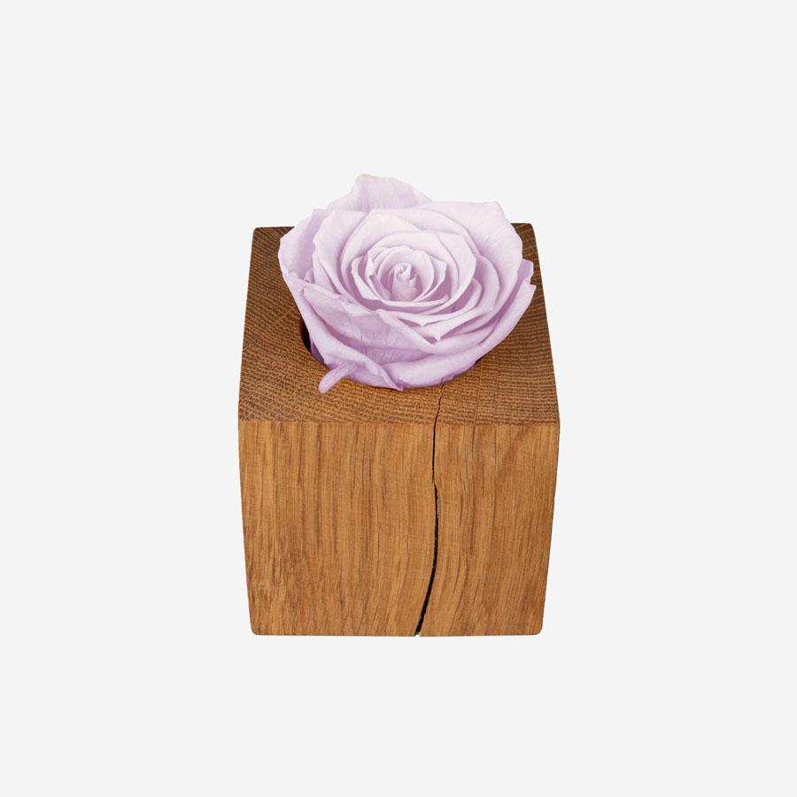 1 rosa Infinity Rose im Holzwürfel