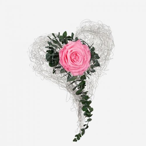 Drahtherz mit 1 pinken XXL Infinity Rose - My Rosegarden