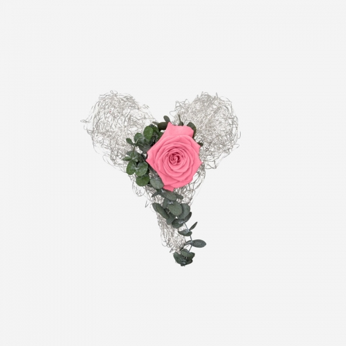 Drahtherz mit 1 rosa Infinity Rose - My Rosegarden