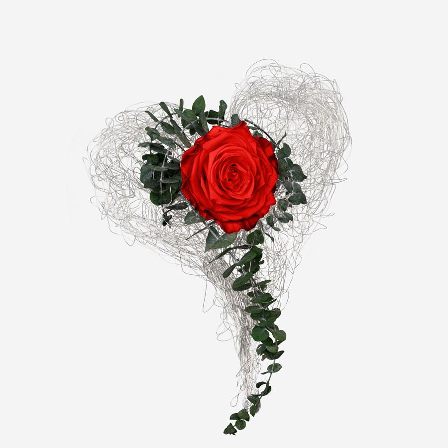 Drahtherz mit 1 roten Infinity Rose XXL - My Rosegarden
