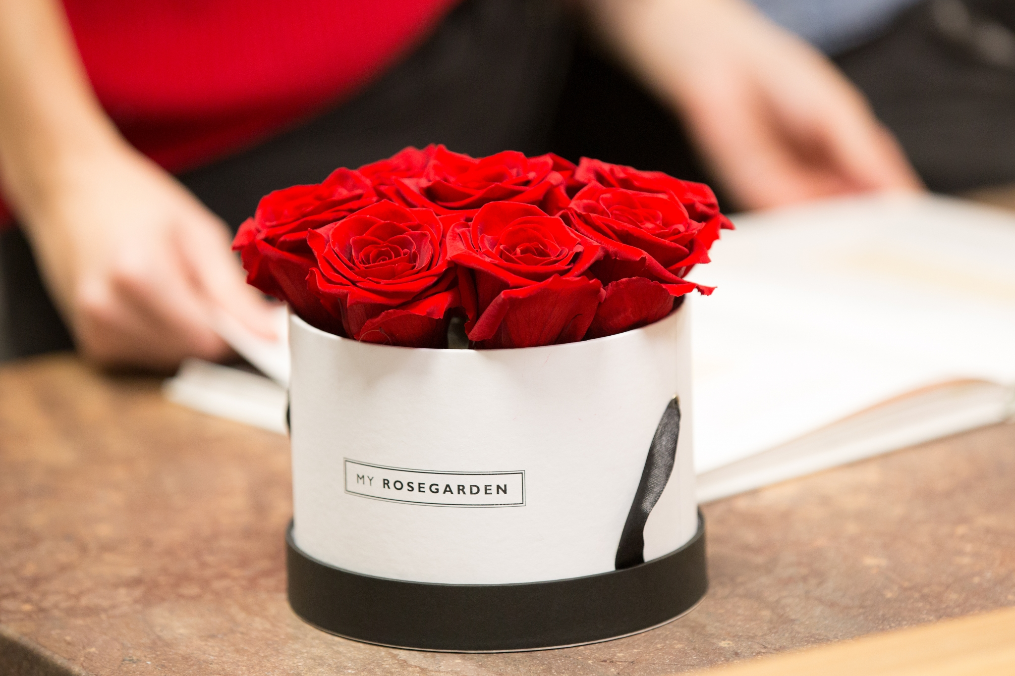 So blüht Deine Infinity-Rose für die Ewigkeit! Alles rund um die richtige Pflege und den idealen Standort